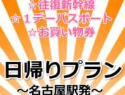 【メイト】JRで行く日帰り 東京ディズニーリゾートへの旅 往復新幹線+1デーパスポート+イクスピアリお買い物券がついてこの値段!