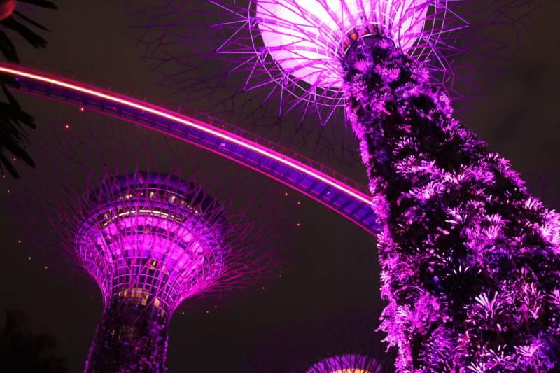 シンガポール行ってきました~その1~