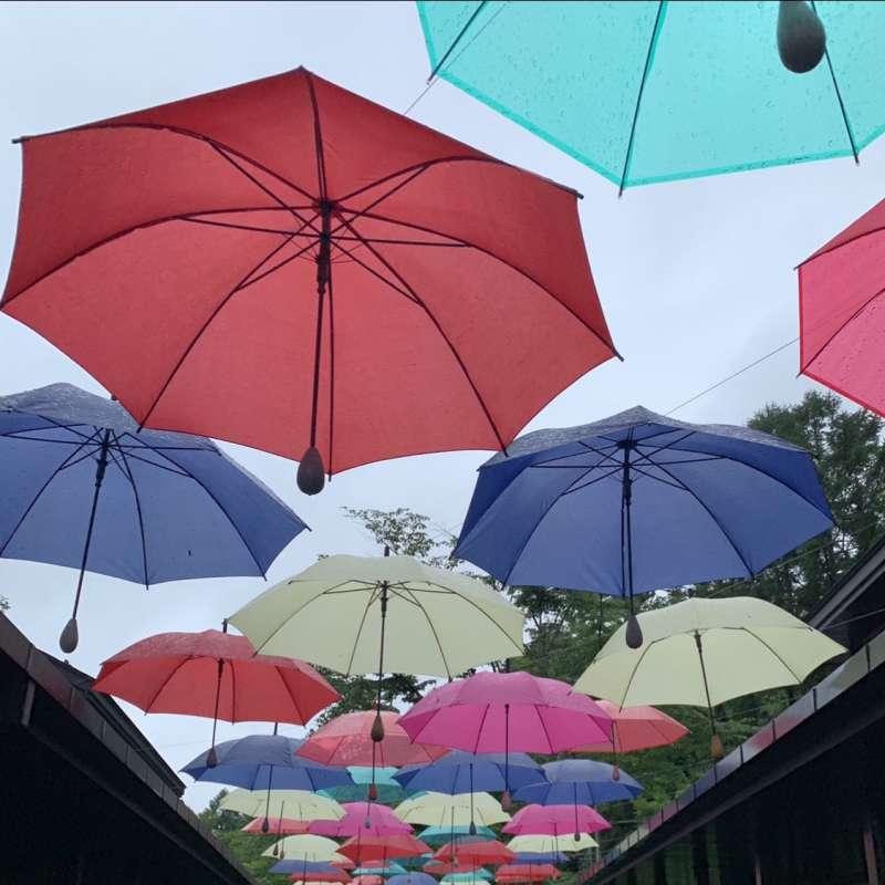夏の軽井沢へ行こう!