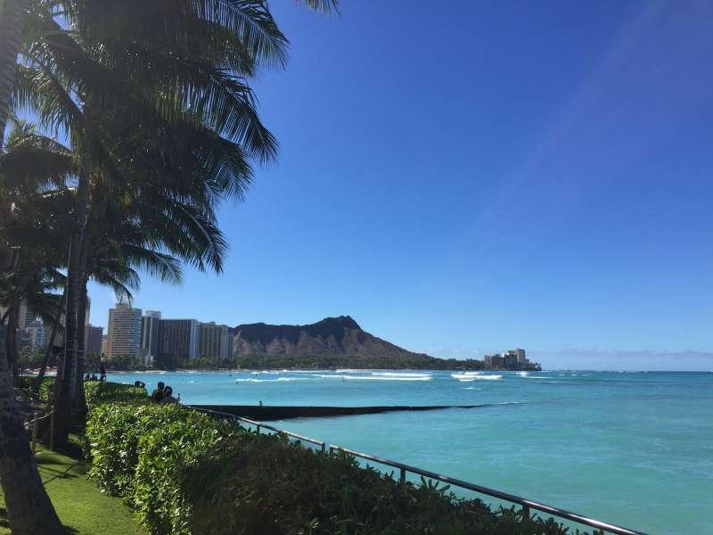 ハワイの人気オプショナルツアー!
